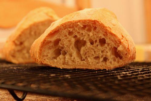 Jill's First Loaf Crumb