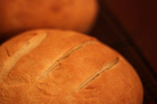Sourdough Bread with KAF Fresh SD Starter