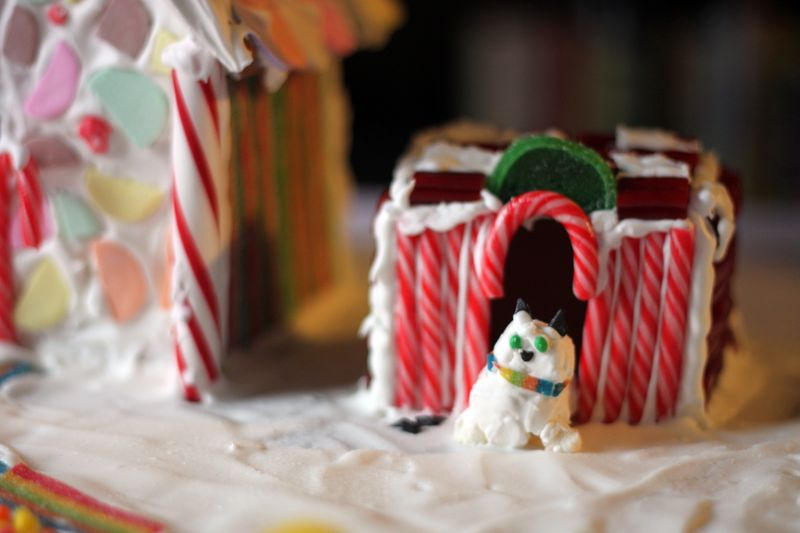 Gingerbread Dog House from Graham Crackers